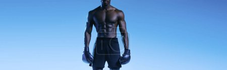 Photo for Cropped view of shirtless african american boxer on blue background, panoramic shot - Royalty Free Image