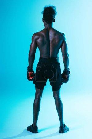 Photo pour Vue arrière de torse nu, sportif américain africain musculaire dans des gants de boxe sur le fond bleu - image libre de droit
