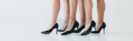 Photo for Panoramic shot of three women wearing black high-heeled shoes on grey - Royalty Free Image