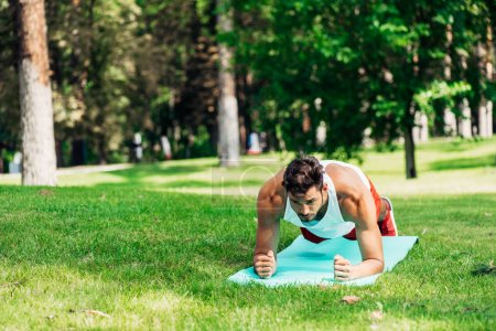 handsome sportsman doing plank exercise on fitness mat