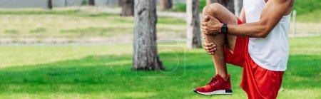panoramic shot of sportsman in sportswear exercising in park