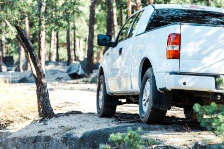 Photo pour Luxe blanc et voiture moderne près des arbres dans les bois - image libre de droit