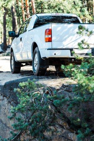 Photo pour Branches vertes de sapin près de la voiture moderne blanche - image libre de droit
