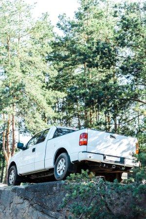 Photo pour Vue d'angle bas de la voiture blanche moderne dans les bois - image libre de droit