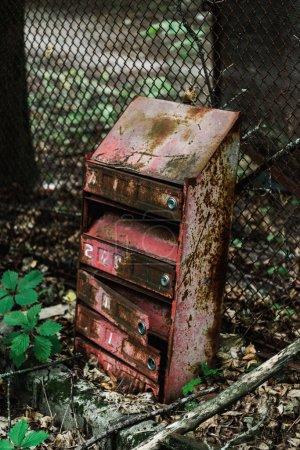 Photo pour Boîte aux lettres rétro et rouillée près des feuilles vertes - image libre de droit