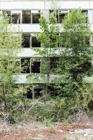 Photo for Abandoned building near green trees in chernobyl - Royalty Free Image