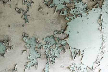 Photo for Bottom view of aged and flaky turquoise ceiling - Royalty Free Image