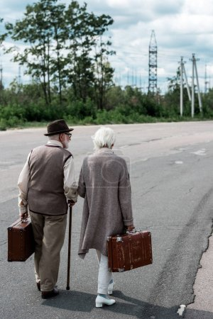 Photo for Back view retired woman and man in hat walking with travel bags - Royalty Free Image