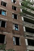 """Постер, картина, фотообои """"заброшенное коричневое здание возле зеленых деревьев с листьями в Чернобыле"""""""