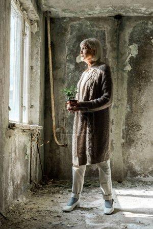 Foto de Mujer mayor sosteniendo pequeña planta en maceta en la habitación vacía - Imagen libre de derechos