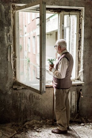 Photo for Retired bearded man in glasses holding plant near window in room - Royalty Free Image