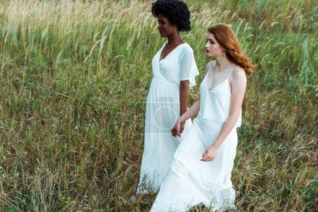Photo pour Jeunes et jolies femmes multiculturelles marchant dans le domaine vert - image libre de droit