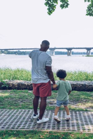 Photo pour Back view of african american father and son looking at river while walking in park - image libre de droit