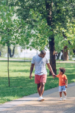 Photo pour African american father and son holding hands and looking at each other while walking in park - image libre de droit
