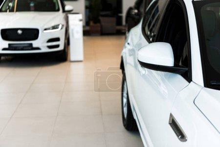 Photo pour Foyer sélectif des voitures blanches et brillantes dans la salle d'exposition de voiture - image libre de droit
