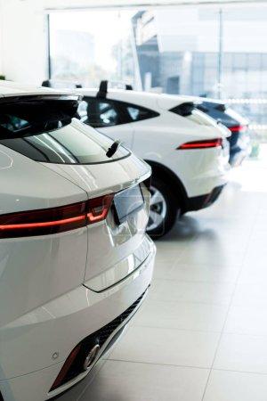 Photo pour Foyer sélectif des voitures blanches dans la salle d'exposition de voiture - image libre de droit