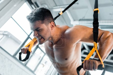 Photo for Handsome sportsman working out on suspension trainer in sports center - Royalty Free Image