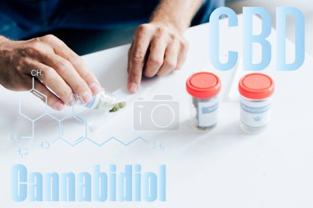 Photo for Cropped view of man rolling blunt from medical cannabis in apartment with cbd molecule illustration - Royalty Free Image