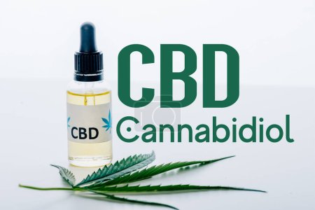 cbd oil in bottle near green marijuana leaf isolated on white with cbd illustration