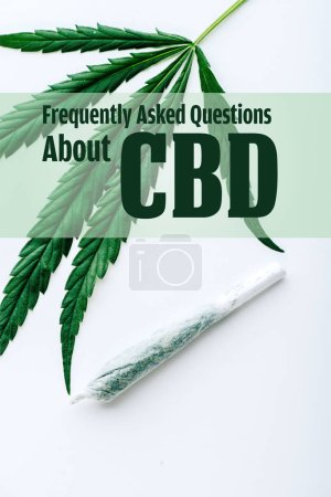 top view of medical marijuana leaf and joint on white background with frequently asked questions about cbd illustration