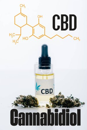 cbd oil in bottle near medical marijuana buds isolated on white with cbd molecule illustration