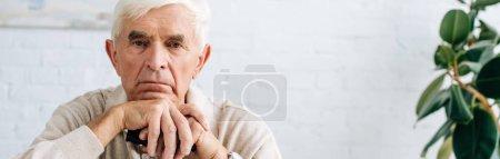 Photo pour Plan panoramique de l'homme âgé regardant la caméra et tenant la canne en bois dans l'appartement - image libre de droit