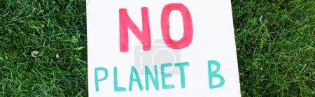 Photo pour Panoramique de la plaque sans lettrage planète b sur herbe verte, concept écologique - image libre de droit