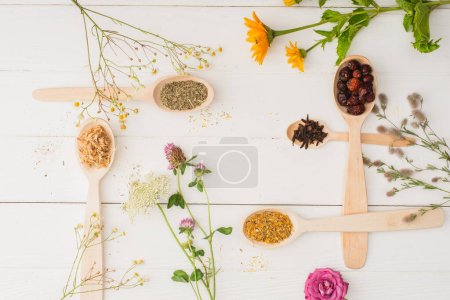 Photo for Top view of herbs in spoons and flowers on white wooden background, naturopathy concept - Royalty Free Image