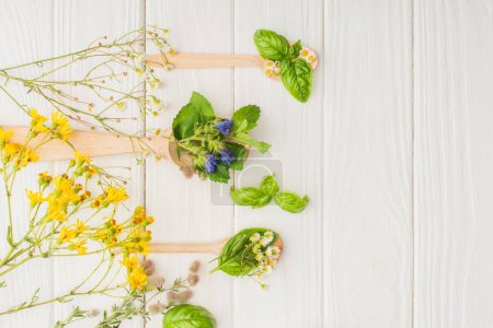 Photo for Top view of herbs and green leaves in spoons near flowers on white wooden background, naturopathy concept - Royalty Free Image