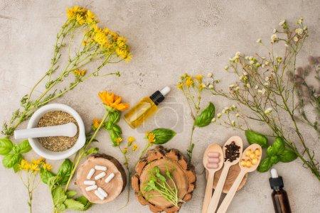 Photo pour Vue de dessus des herbes, feuilles vertes, mortier avec pilon, bouteilles et pilules dans des cuillères en bois sur fond de béton, concept de naturopathie - image libre de droit