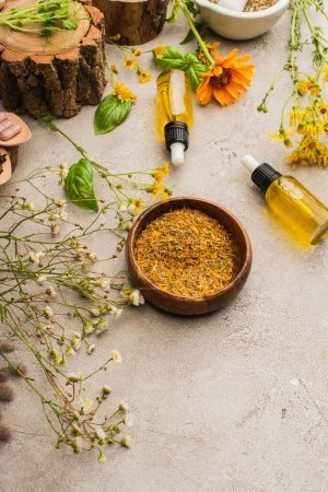 wildflowers, herbs, bottles on concrete background, naturopathy concept