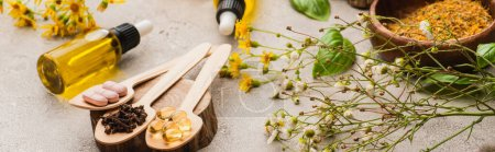 panoramic shot of wildflowers, herbs, bottles and pills in spoons on concrete background, naturopathy concept