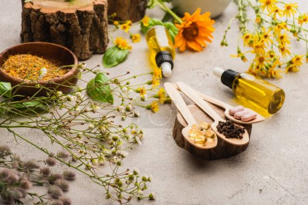 Photo for Selective focus of wildflowers, herbs, bottles and pills in wooden spoons on concrete background, naturopathy concept - Royalty Free Image