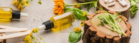 Photo for Panoramic shot of wildflowers, herbs, bottles and pills on concrete background, naturopathy concept - Royalty Free Image
