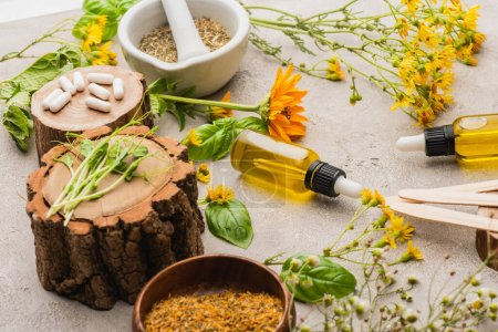 wildflowers, herbs, bottles and pills on concrete background, naturopathy concept