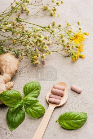 Photo pour Herbe, feuilles vertes, racine de gingembre et pilules dans une cuillère en bois sur fond béton, concept de naturopathie - image libre de droit