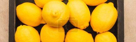 Photo pour Vue du dessus des citrons jaunes mûrs gagnent boîte en bois sur la surface en béton beige, vue panoramique - image libre de droit