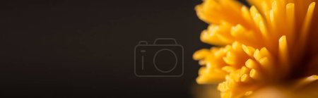 Photo for Close up view of uncooked Italian spaghetti isolated on black, panoramic shot - Royalty Free Image