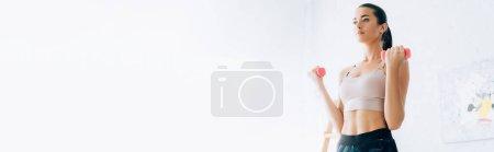 Photo pour Vue panoramique de la formation des jeunes femmes avec haltères roses à la maison - image libre de droit