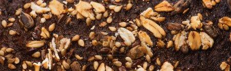 Nahaufnahme von frisch gebackener Brotkruste mit Müsli, Panoramaaufnahme
