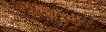 Photo for Close up view of fresh baked bread crust, panoramic shot - Royalty Free Image