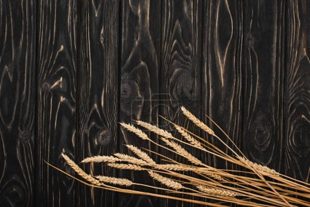 Photo for Top view of spikelets on wooden black surface - Royalty Free Image