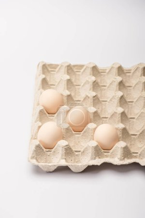 fresh chicken eggs in cardboard egg tray on white background