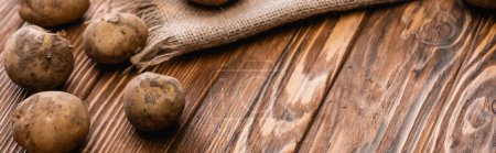 dirty potatoes and burlap on wooden table, panoramic shot
