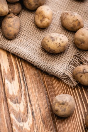 Photo for Dirty potatoes and burlap on wooden table - Royalty Free Image