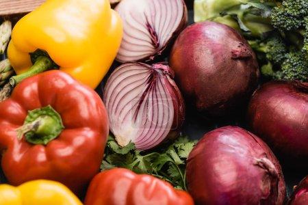Photo pour Vue rapprochée des légumes frais et colorés mûrs - image libre de droit