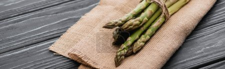 bundle of fresh green asparagus on burlap on wooden surface, panoramic shot
