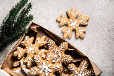 Top view of box of gingerbread cookies near brunch of pine on grey background