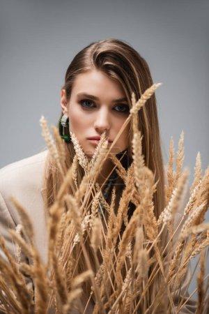 junge Frau blickt durch Gerstenstacheln auf grauem Hintergrund in die Kamera