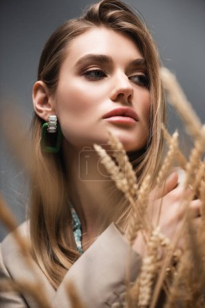 stylish woman looking away near barley spikelets on grey background